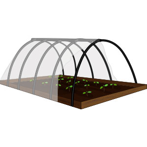 Structure and Grow Space Covering