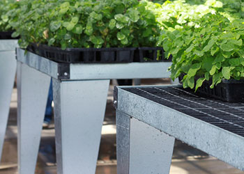 Growing Benches
