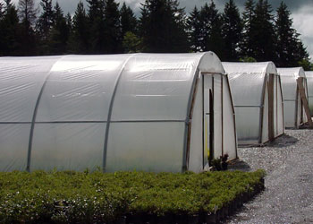 High Tunnels & Hoop Houses
