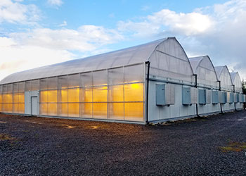 Light Dep Greenhouses