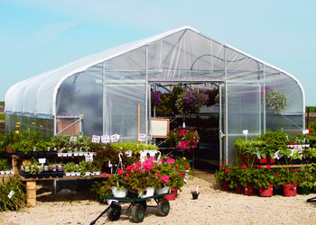 Retail & Display Greenhouses