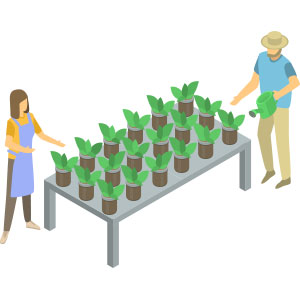 Benches and Grow Tables