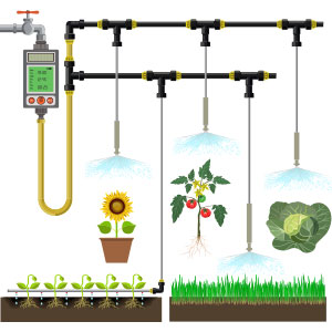 Irrigation, Watering, and Fertigation