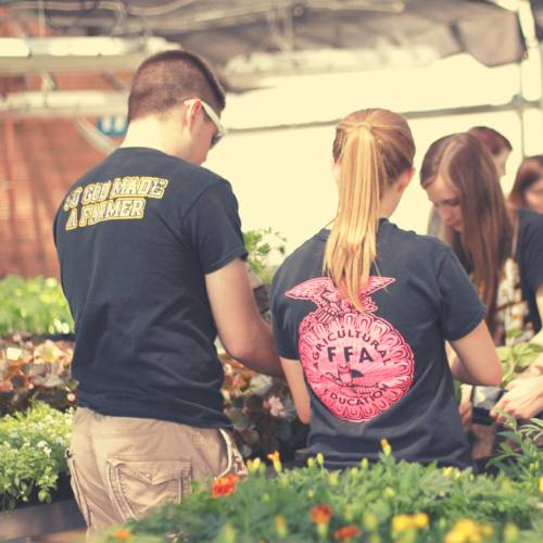 Students working in a greenhouse surrounded by plants