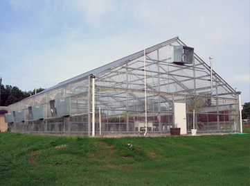 Texan Teaching Greenhouse Package