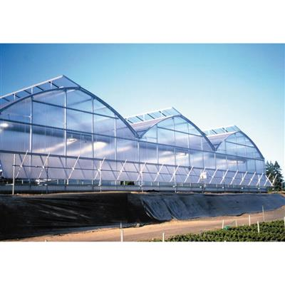 Arch 6500 Commercial Greenhouse Gothic Arch Greenhouse Plans Designs on japanese greenhouse plans, home greenhouse plans, diy greenhouse plans, glass greenhouse plans, attached greenhouse plans, cheap greenhouse plans, a-frame greenhouse plans, vintage greenhouse plans, inexpensive two-story house plans, pit greenhouse plans, gothic style greenhouse plans, storage greenhouse plans, barn greenhouse plans, unique greenhouse plans, underground greenhouse plans, basic greenhouse plans, garden arch plans, best greenhouse plans, quonset greenhouse plans, earth sheltered greenhouse plans,
